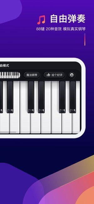 鋼琴彈奏大師游戲官方安卓版圖片1