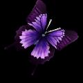 蝴蝶瀏覽器最新版