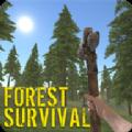 失落森林生存游戲