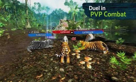两只老虎免费完整版图2