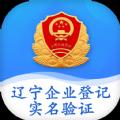 辽宁企业登记实名认证最新版