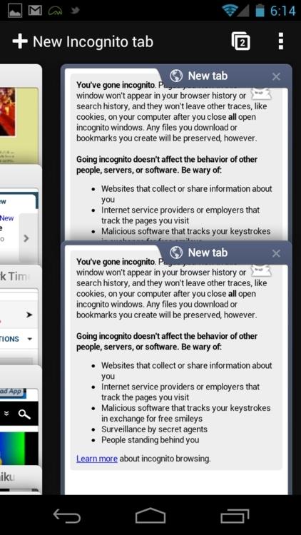 谷歌浏览器ipad版图2