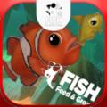 鲤鱼解说小鱼模拟器游戏