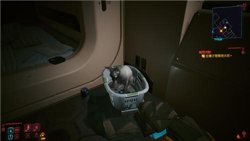 赛博朋克2077猫咪怎么获得?养猫玩法解锁介绍[视频][多图]图片6