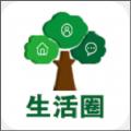 大杨树信息