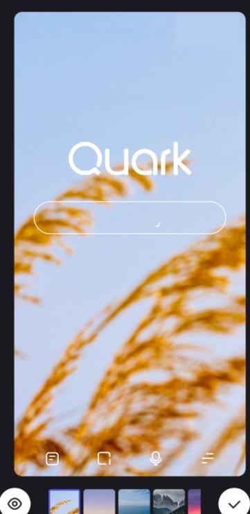 夸克瀏覽器可以修改壁紙嗎?在夸克瀏覽器安卓版的主頁中更改壁紙的方法[多圖]圖片5