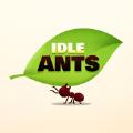 我的宠物蚂蚁破解版