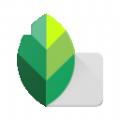 绿叶修图软件
