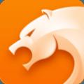 猎豹浏览器网页版下载安装