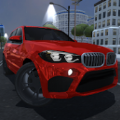 多人汽车驾驶模拟2020游戏