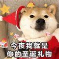 圣诞老人被关起来了图片