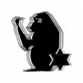 炬猩app官网版
