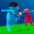 Pass Pass Goal游戏