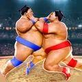 相撲摔(shuai)跤手2020游戲