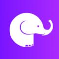 大象恢复助手