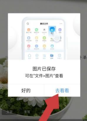 如何下載QQ瀏覽器中(zhong)的皮膚(fu)壁紙圖片?下載QQ瀏覽器中(zhong)的皮膚(fu)壁紙圖片的方法(fa)[多圖]圖片5