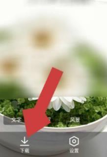 如何下載QQ瀏覽器中(zhong)的皮膚(fu)壁紙圖片?下載QQ瀏覽器中(zhong)的皮膚(fu)壁紙圖片的方法(fa)[多圖]圖片4