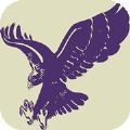 飞鹰浏览器app