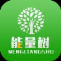 NL能量树实名认证
