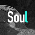 Soul官网版