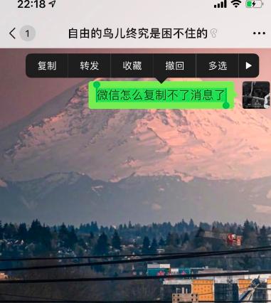 iOS14微信怎么复制粘贴消息[多图]