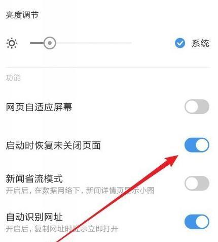 手机浏览器如何设置打开就是上次关闭时网页[多图]图片6
