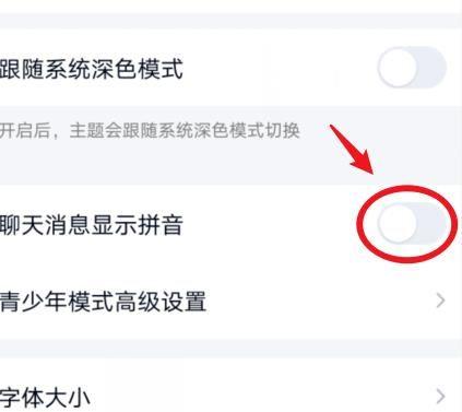 QQ聊天消息怎么设置显示拼音?QQ聊天消息设置显示拼音的方法[多图]图片5