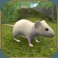 疯狂地鼠3d模拟游戏