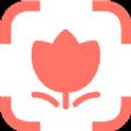 识花神器植物在线识别app下载安装