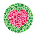 色盲色弱自检测试软件