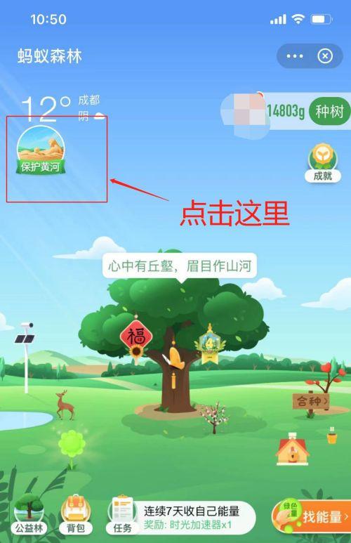 支付宝保护黄河活动怎么进入?2021蚂蚁森林保护黄河活动玩法教程[多图]图片3