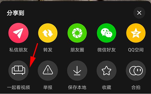 抖音一起看视频功能开启方法,一起看视频私密设置步骤一览[多图]图片3