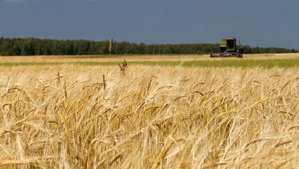 北大荒农服app是干什么用的