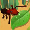 蚂蚁进化3D破解版