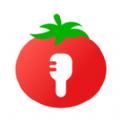 番茄语音app不同版本