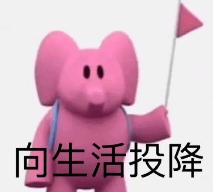 粉色大象表情包gif图1