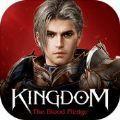 王国的反击官方版