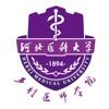 河北乡医软件