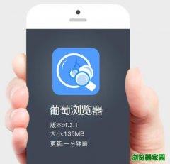 葡萄浏览器官网下载app安装[图]